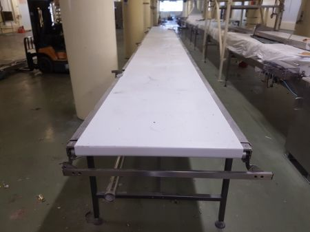 11 Metre Long Stainless Conveyor
